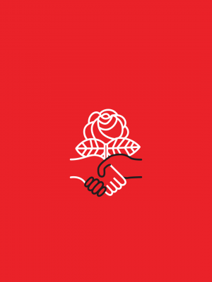 dsa-logo-image-1080-1920
